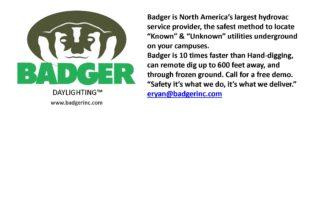 Badger logo